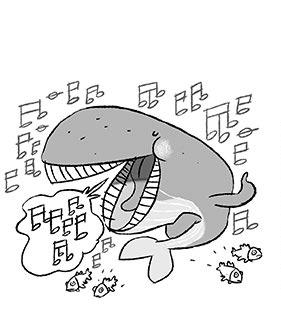 fumetto-balena_03